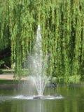 Fontain, Vijver, Wateraard, Park, springt Zonnige dag op royalty-vrije stock foto
