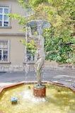 Fontaine à Budapest Photos libres de droits