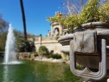 Fontaine au printemps Photographie stock