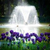 Fontaine avec des fleurs Photos libres de droits