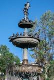 Fontaine avec des pigeons Photographie stock