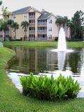 Fontaine avec des plantes aquatiques images libres de droits