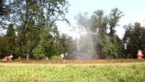 Fontaine avec un arc-en-ciel à l'arrière-plan clips vidéos