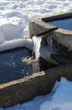 Fontaine congelée Photo libre de droits