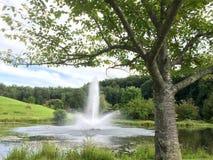 Fontaine d'étang Photo libre de droits