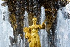 Fontaine d'amitié de peuples au centre d'exposition de la Tout-Russie VDNKh, Moscou Photographie stock