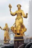 Fontaine d'amitié de peuples au parc de VDNKH à Moscou Photo stock