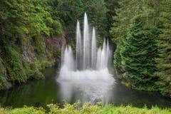 Fontaine d'eau dans le jardin submergé, jardins de Butchart, Victoria, Canada Images libres de droits