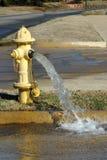 Fontaine d'eau de bouche d'incendie Images stock