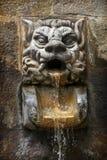 Fontaine d'eau formée comme tête d'un lion Photos libres de droits