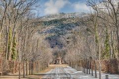 Fontaine d'EL Canastillo au palais de Granja de La, Espagne Photographie stock