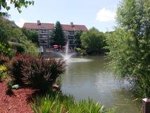 Fontaine dans l'étang Photo libre de droits