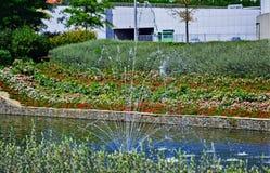 Fontaine dans un étang avec une allée des roses devant l'arène de Donbass à Donetsk photos stock