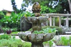 Fontaine dans un jardin botanique brésilien image libre de droits