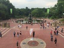 Fontaine de Bethesda dans Central Park Image stock