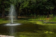 Fontaine de jardin botanique Photographie stock libre de droits
