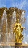 Fontaine de l'amitié des peuples en Russie Photographie stock