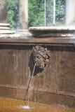 Fontaine de la cascade du lion Photos stock