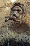 Fontaine de rue sous forme de tête de lion, Italie Photo stock