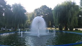 Fontaine en parc Photographie stock libre de droits