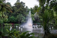 Fontaine en parc de Pukekura, nouveau Plymouth Nouvelle-Zélande image libre de droits