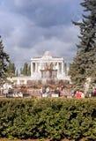 Fontaine en parc de VDNKH, Moscou Photographie stock