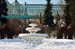 Fontaine en parc vide de ville Image stock