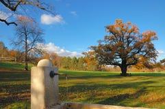 Fontaine en stationnement d'automne Photo stock