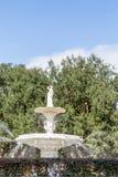 Fontaine et chêne Image libre de droits