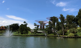 Fontaine et les arbres superbes Photo libre de droits