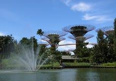 Fontaine et les arbres superbes Image stock