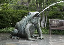 Fontaine faisante le coin de crapaud chez Dallas Arboretum images stock