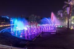 Fontaine musicale la nuit photos libres de droits