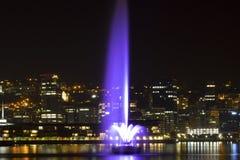 Fontaine par nuit photo libre de droits