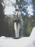 Fontaine pendant l'hiver en Idaho Photo libre de droits