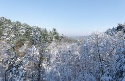 Fontainebleau forest under snow. The Apremont gorges in Fontainebleau forest Stock Photography