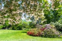 Fontainebleau park Chateau de Fontainebleau garden near Paris, France royalty free stock image