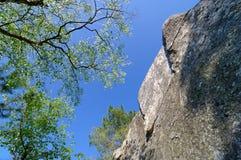 Fontainebleau sandstone rocks royalty free stock image