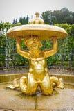 Fontaines antiques dans Peterhof Photographie stock libre de droits