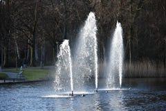Fontaines artésiennes décoratives photo stock