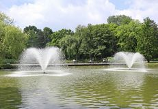 Fontaines dans l'étang à côté des bois photo libre de droits