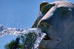 Fontaines de lions de Ceccarini sur Piazza del Popolo, à Rome images libres de droits