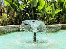 Fontaines en parc de ville Gouttes de l'eau augmentant des fontaines photos libres de droits