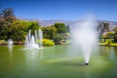 Fontaines en Santa Catarina Park, Funchal images stock