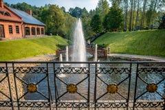 Fontaines et pont à Vilnius photos libres de droits