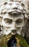 Fontan-κεφάλι στο πάρκο Στοκ Εικόνες