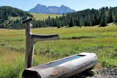 Fontana alpina Fotografia Stock