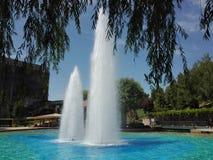 Fontana artesiana e rami verdi dell'albero immagine stock libera da diritti