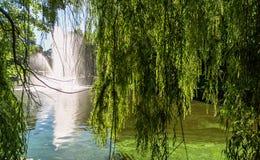 Fontana in canale di Riga immagine stock libera da diritti