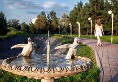 Fontana con le colombe nel parco Immagine Stock Libera da Diritti